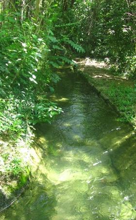 Connessione Ecologica Bosco di Vanzago