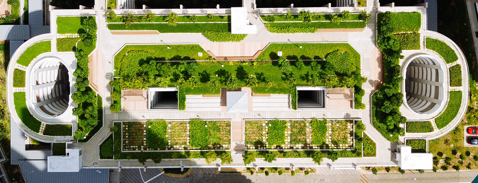 Green roof di CLEVER